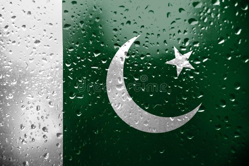 Textuur van de vlag van Pakistan royalty-vrije illustratie