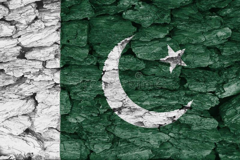 Textuur van de Vlag van Pakistan op schors royalty-vrije illustratie