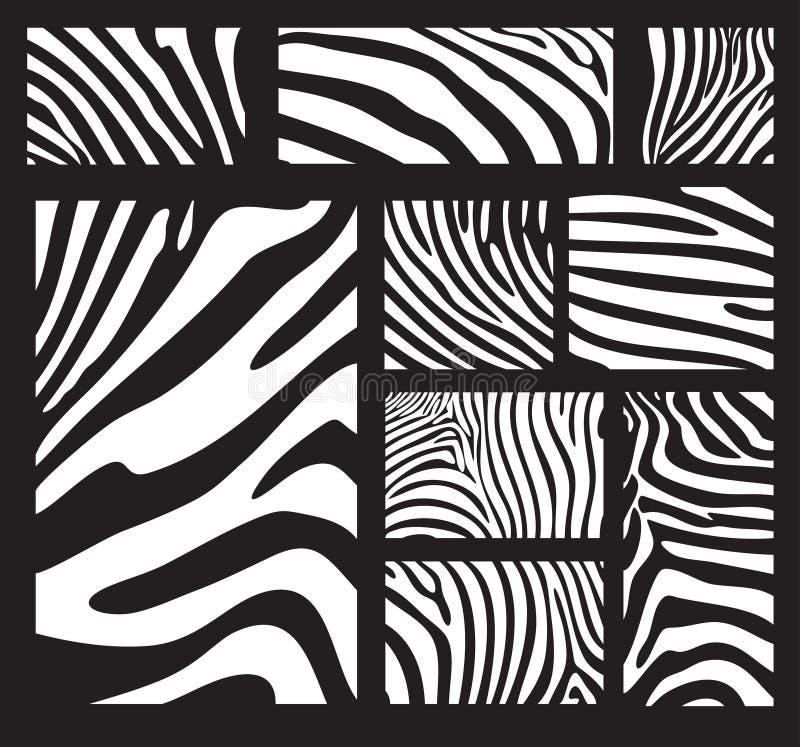 Textuur van de zebra stock illustratie