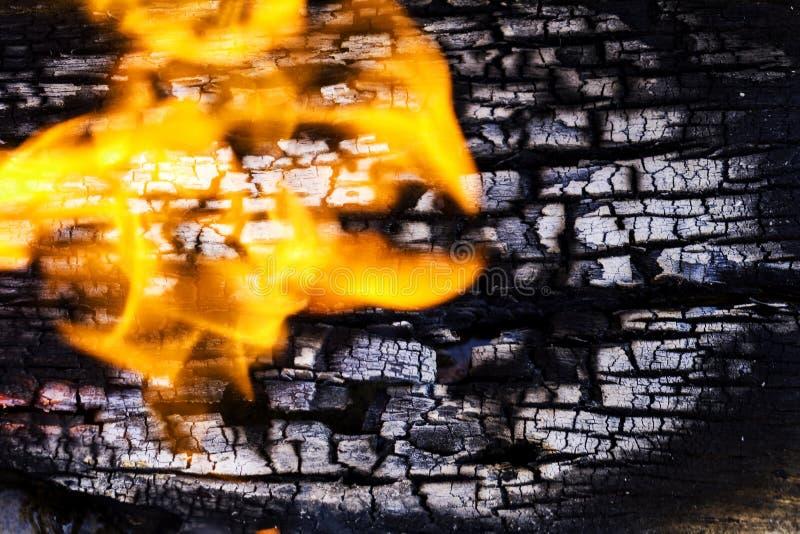 Textuur van dichte omhooggaande houten plaat, terwijl het branden van in brand gestoken stock foto's