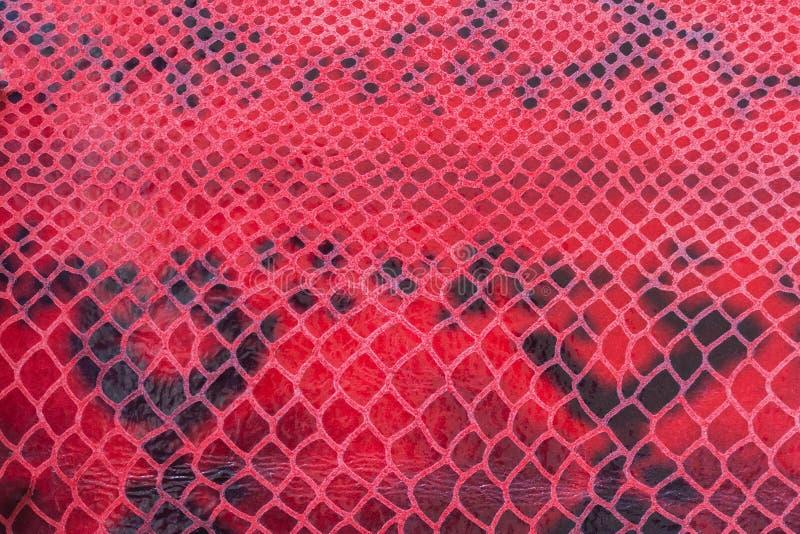 Textuur van echt leerclose-up, die onder de huid een reptiel, boeiend helder patroon in reliëf wordt gemaakt Voor achtergrond royalty-vrije stock foto