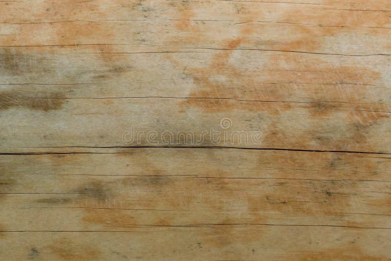 Textuur van een natuurlijke boom met een ongebruikelijke structuur stock afbeeldingen