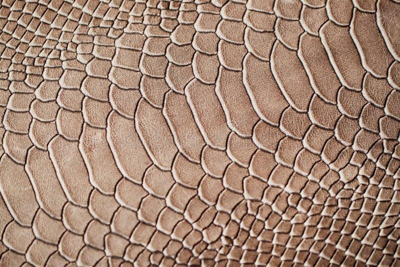 Textuur van exotisch echt die leerclose-up, onder de huid een reptiel, achtergrond in reliëf wordt gemaakt royalty-vrije stock foto's