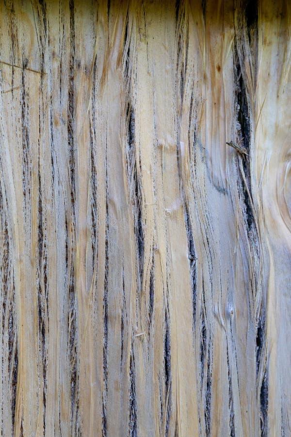 Textuur van gehakte of afgebroken houtsnede, barsten, onderbrekingen Gebarsten houten achtergrond stock afbeeldingen
