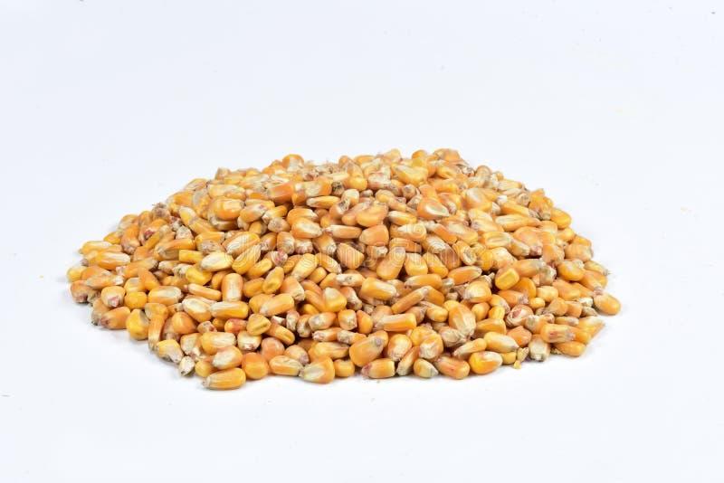 Textuur van graan stock afbeeldingen