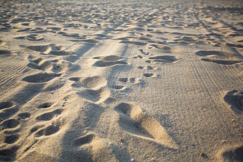 Textuur van het overzeese strand lichte kruimelige zand Eiland stock afbeeldingen