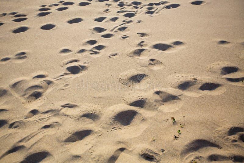 Textuur van het overzeese strand lichte kruimelige zand nave stock fotografie