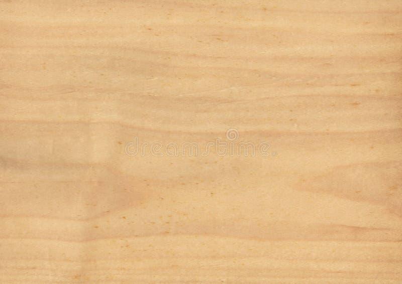 Textuur van houten close-up als achtergrond stock afbeelding