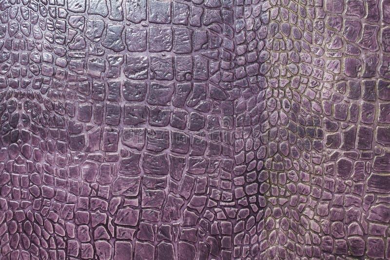 Textuur van krokodilhuid stock afbeelding