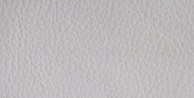 Textuur van leer stock foto