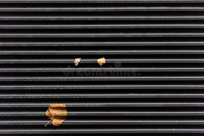 Textuur van metaalgrill met de herfstbladeren royalty-vrije stock afbeelding