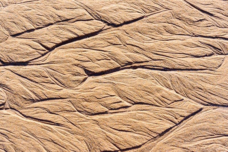 Textuur van nat zand op het strand stock afbeeldingen