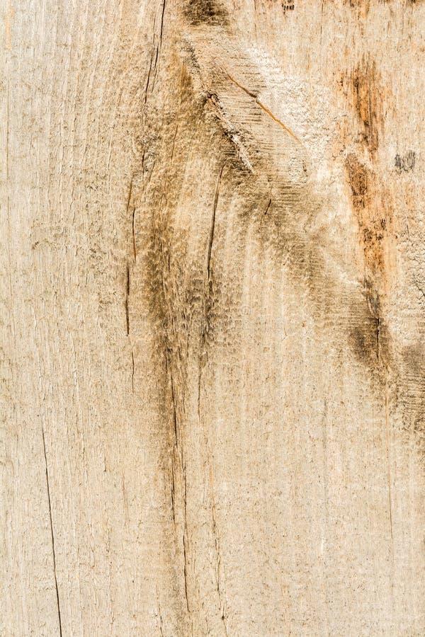 Textuur van oud droog doorstaan gebarsten hout, barsten langs de vezels van logboeken, close-up abstracte achtergrond stock foto's