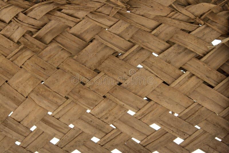 Download Textuur van palmbladen stock foto. Afbeelding bestaande uit dood - 54088086
