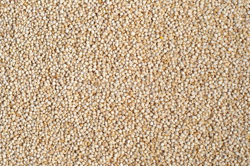 Textuur van Quinoa korrels stock foto