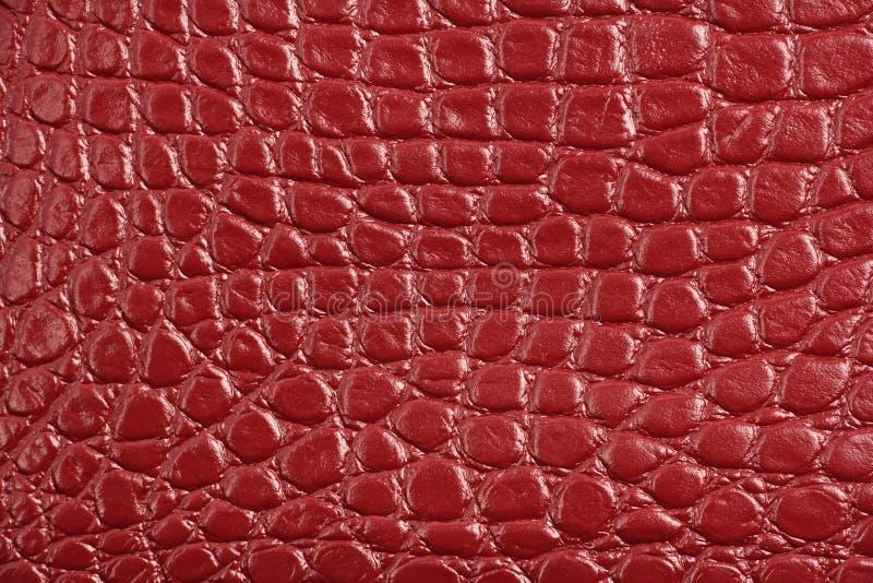 Textuur van rood kastanjebruin echt leer, zoals krokodilhuid stock foto