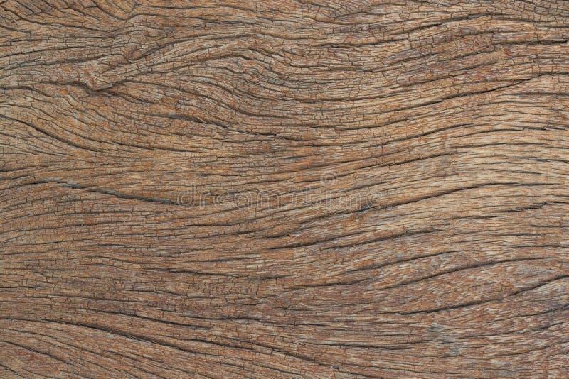Textuur van schors, houten korrelachtergrond royalty-vrije stock fotografie