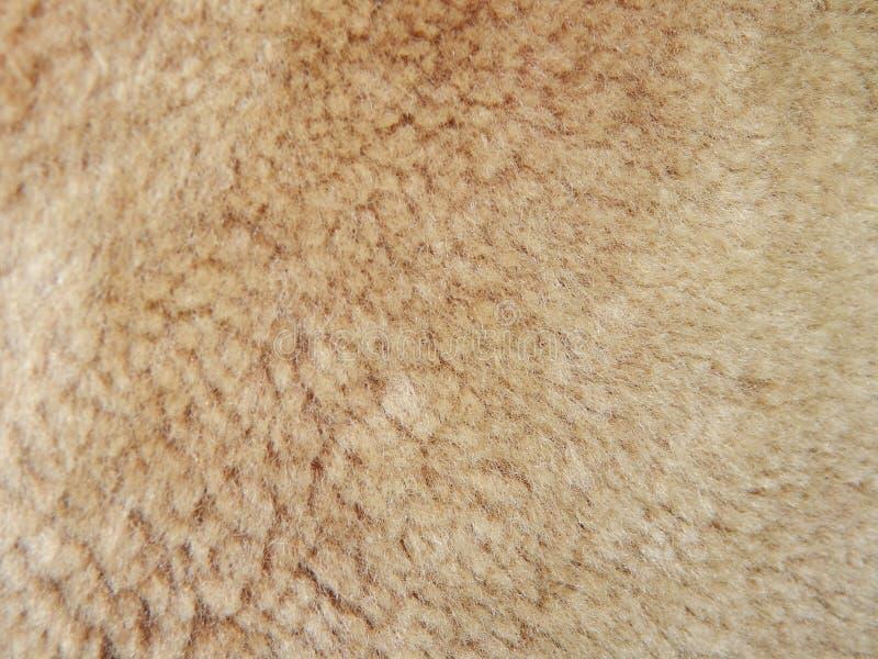 Textuur van textielstoffen, kleding stock foto