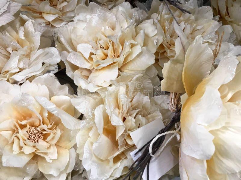 Textuur van witte beige mooie bloemen met gevoelige weelderige bloemblaadjes met fonkelingen De achtergrond stock afbeelding