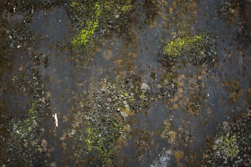 Textuur van zwart grunge concreet en groen mos royalty-vrije stock afbeelding