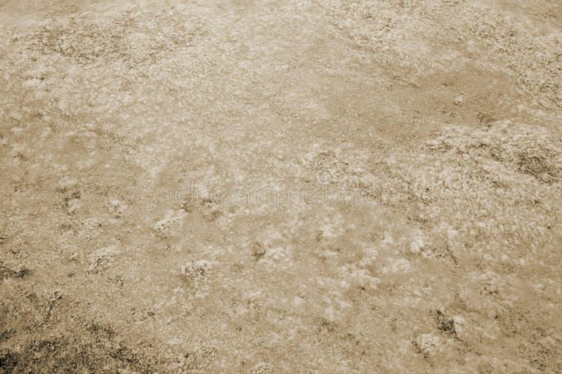 Textuurabstractie van water en algen bij de bodem van een afgevoerde vijver toning royalty-vrije stock afbeelding