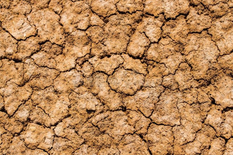 Textuurachtergrond van takirgrond in woestijn stock foto's