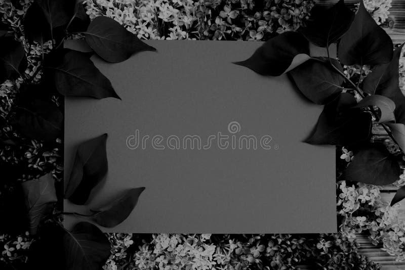 Textuurkader van bladeren donkergrijze foto royalty-vrije stock afbeeldingen