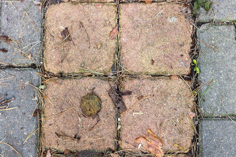 Textuurstraatstenen met gras Hoogste mening stock afbeeldingen