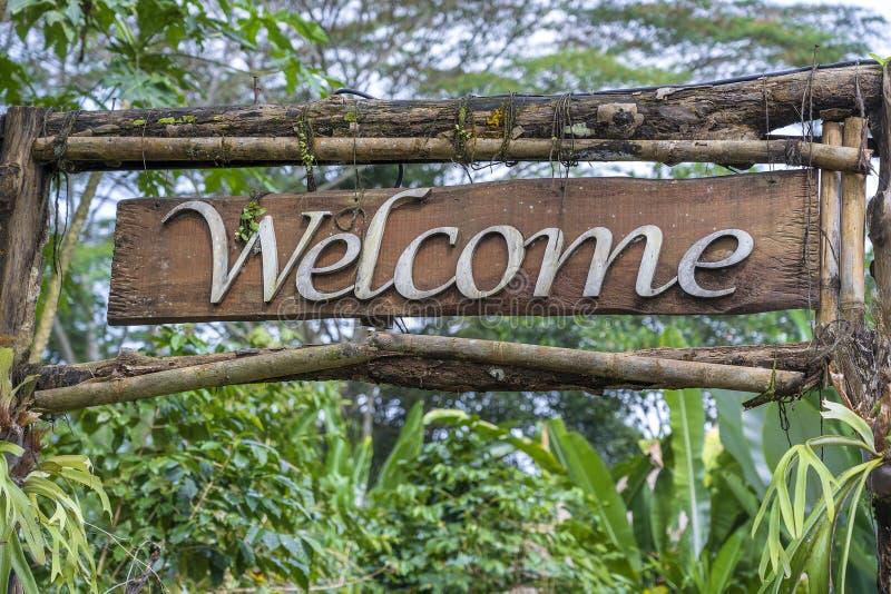 Textvälkomnande på ett träbräde i en rainforestdjungel av den tropiska Bali ön, Indonesien Välkommen träteckeninskrift i royaltyfria foton