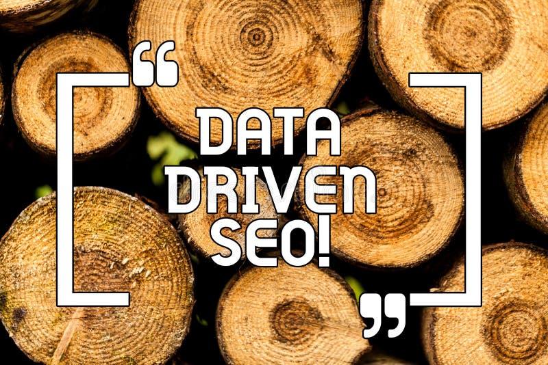 Textzeichen, das Daten gefahrenes Seo zeigt Begriffsfoto Suchmaschinen-Optimierungs-Strategie-Websitevermarkten hölzern lizenzfreie stockfotografie