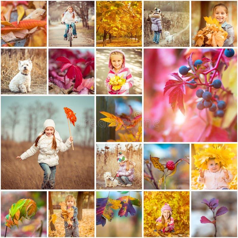 Thème d'automne photo stock