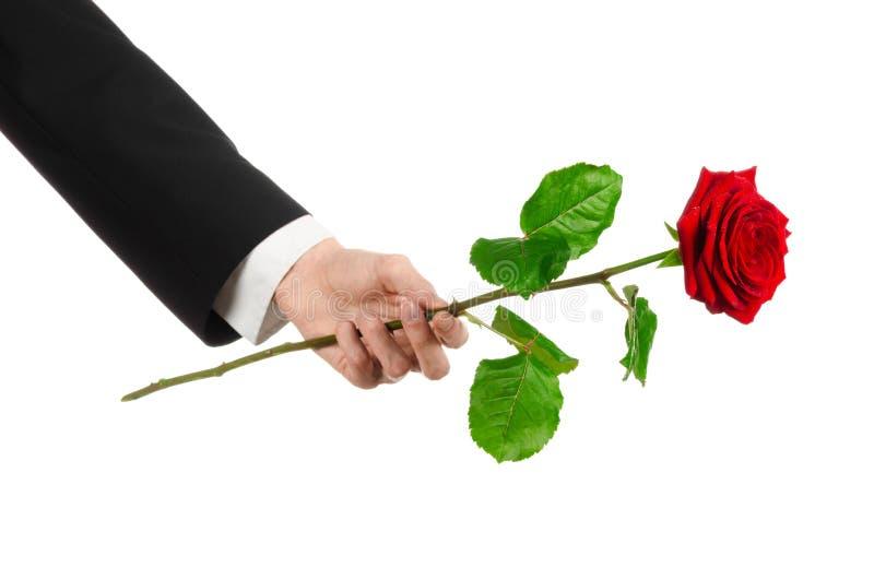 Thème de Saint-Valentin et de jour des femmes : la main de l'homme dans un costume jugeant une rose rouge d'isolement sur le fond photos stock
