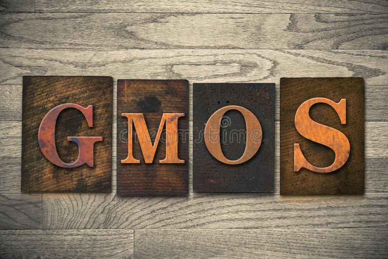 Thème en bois d'impression typographique d'OGM image stock