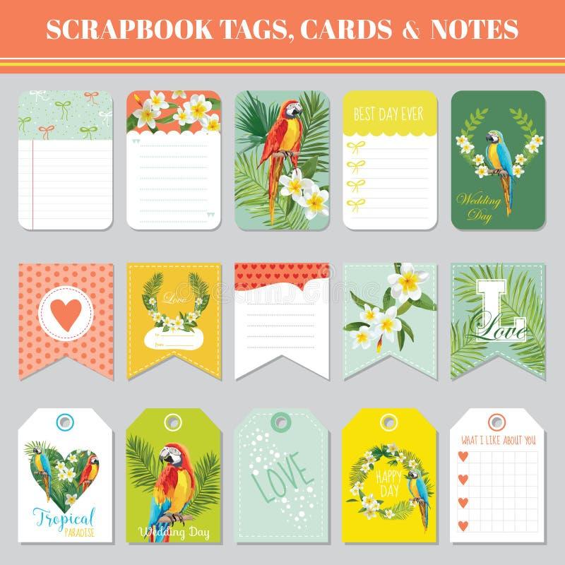 Thème tropical de fleurs et de perroquets pour des étiquettes d'album, des cartes et des notes pour l'anniversaire, fête de naiss illustration stock