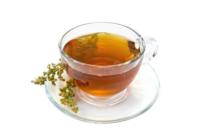 Thé avec l'absinthe dans la tasse en verre images libres de droits