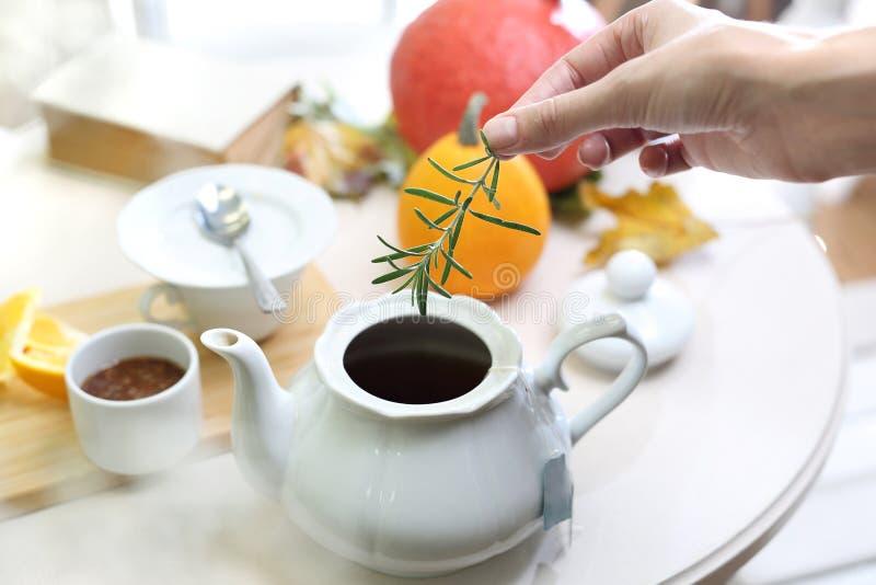 Thé avec un brin de romarin photo libre de droits