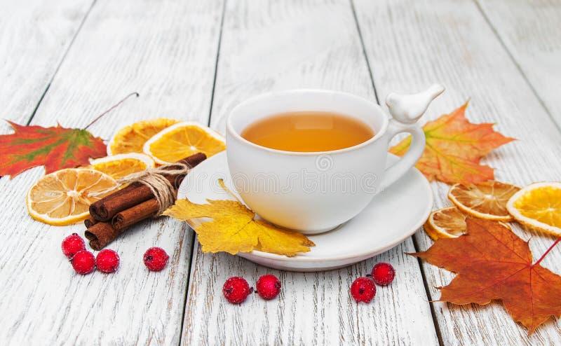 Thé chaud avec des épices image libre de droits