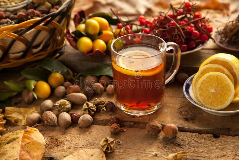 Thé chaud avec le citron et le miel photo stock
