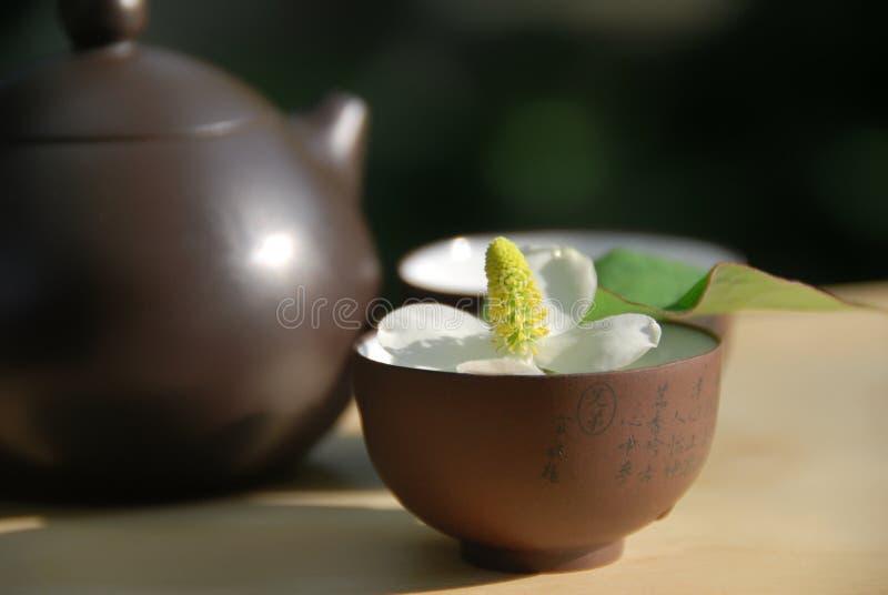 Thé chinois photo libre de droits