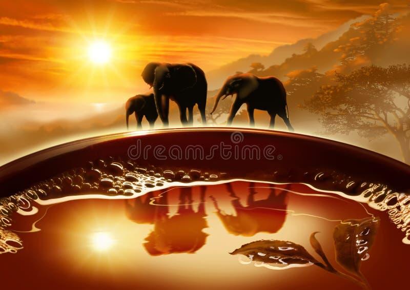 Thé créatif et vert dans une tasse, éléphants sur un fond d'un paysage photo libre de droits
