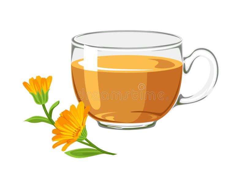 Thé de Calendula dans la tasse en verre avec la fleur orange illustration de vecteur