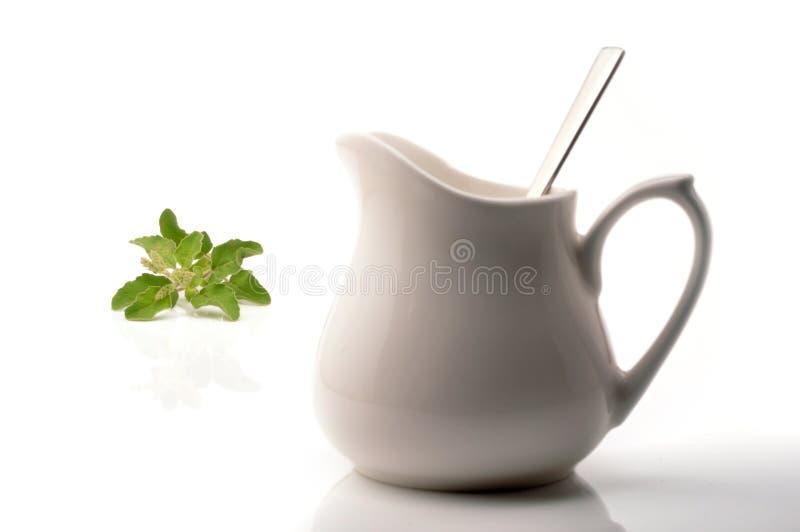 Thé de fines herbes image libre de droits