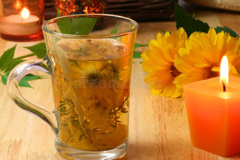 Thé de fines herbes images stock