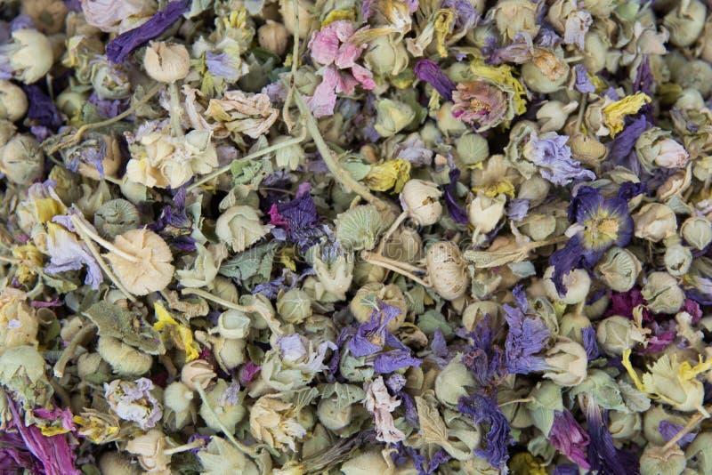 Thé de fines herbes d'hiver image stock