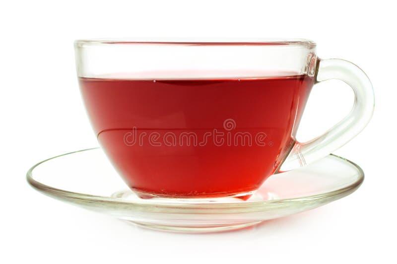 Thé de fruit dans la tasse en verre photographie stock libre de droits