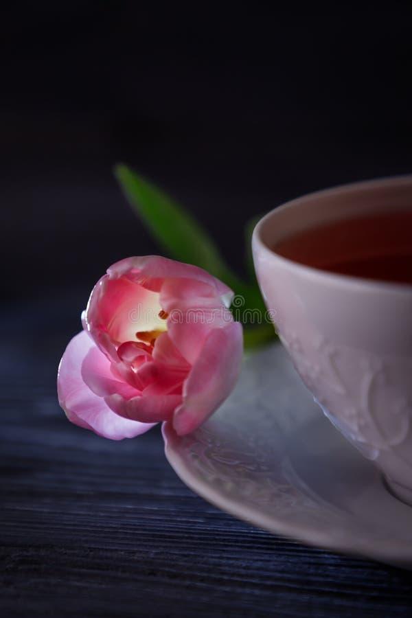 Thé de fruit dans une tasse blanche et une belle tulipe rose Discret, l'espace libre photo libre de droits