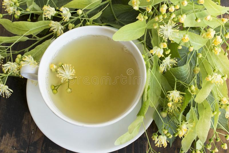 Thé de tilleul avec des fleurs de tilleul photographie stock libre de droits