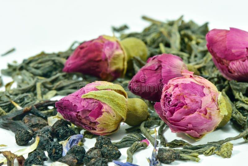 Thé des bourgeons des roses photographie stock libre de droits