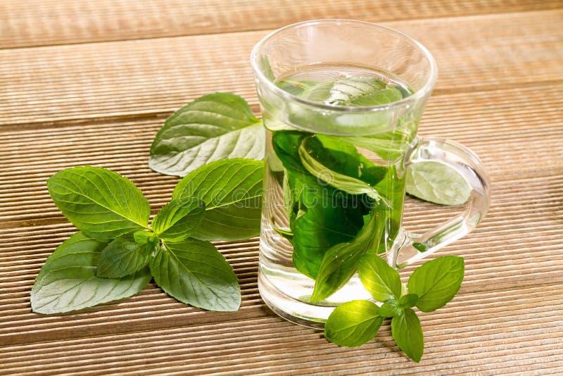 Thé en bon état avec les feuilles en bon état fraîches image stock