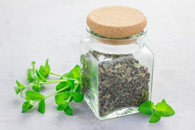 Thé en bon état de fines herbes sec dans un pot en verre avec la menthe poivrée fraîche sur le fond images stock